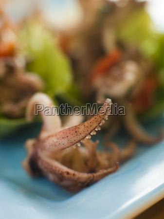baby squid und geroesteten chili salat