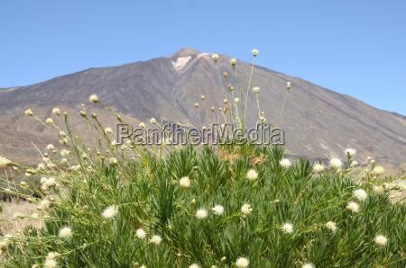 pico de teide volcano tenerife