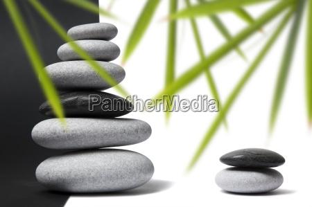 bambus und pebble stillleben