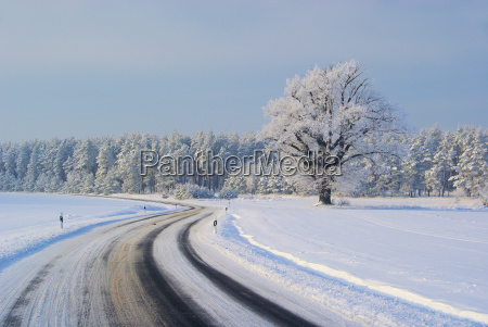 strasse im winter road in