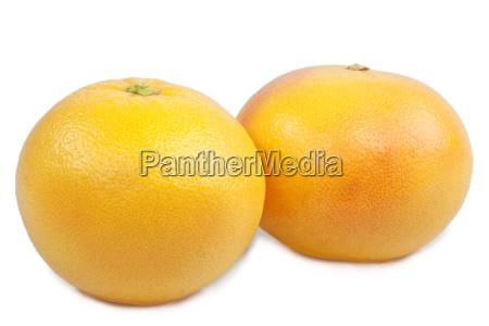 two grapefruits