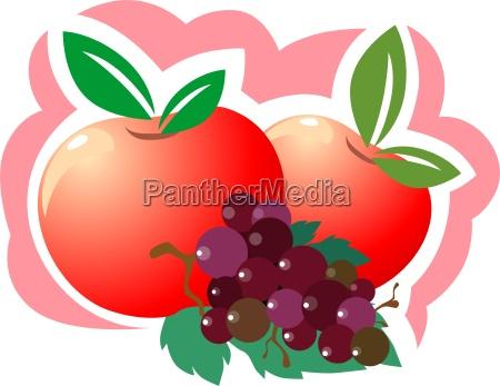 trinken trinkend trinkt getraenk weintrauben frucht