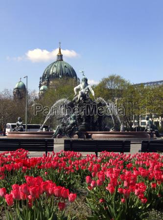neptune fountain at alexanderplatz germany berlin