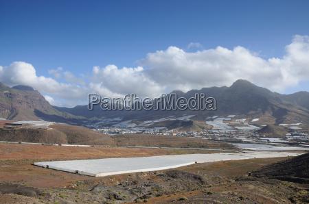 mountains spain canary islands plantations mountain