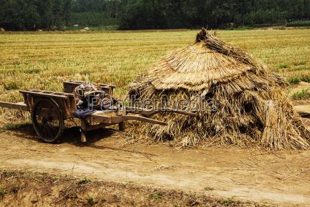 fahrt reisen landwirtschaftlich landwirtschaftliche asien landwirtschaft