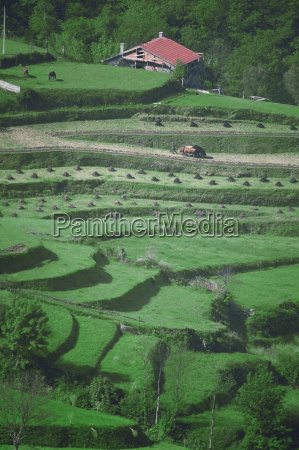 high angle view of a field