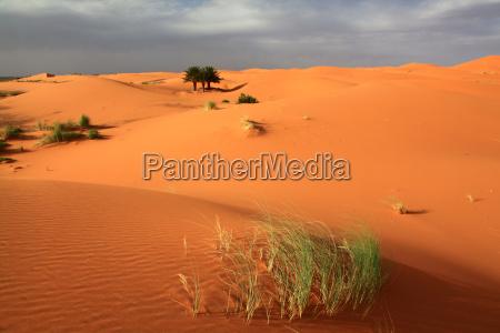 sanduenen in marokko