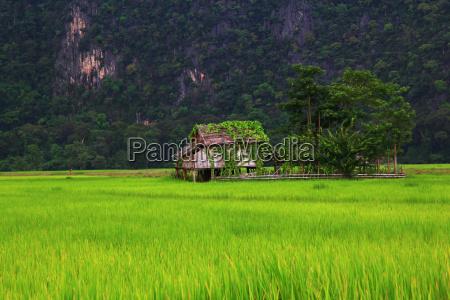 bauernhaus in laos