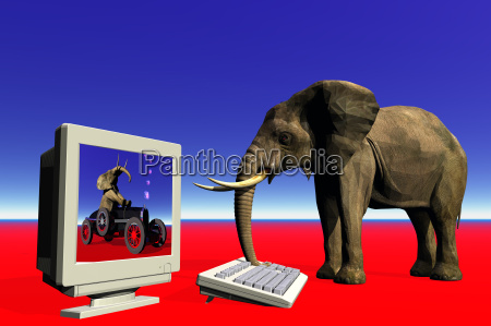 elephant and computer