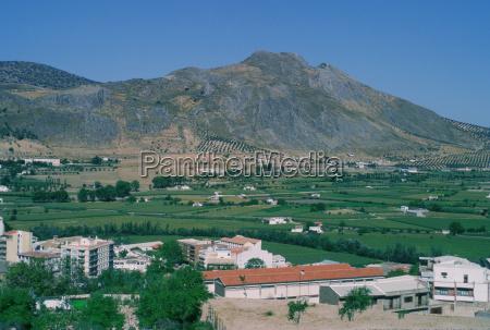 high angle view of houses on
