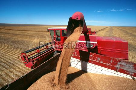 profil blau fahrt reisen landwirtschaftlich landwirtschaftliche