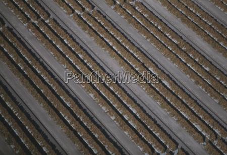 bestellen ordern landwirtschaft ackerbau feld usa