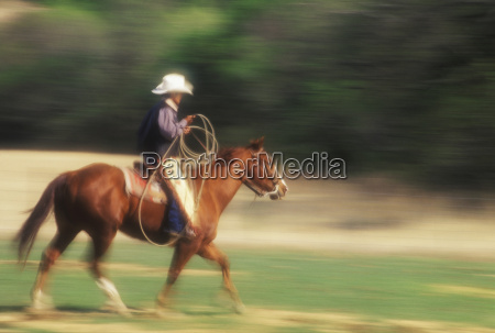 side profile of a cowboy riding