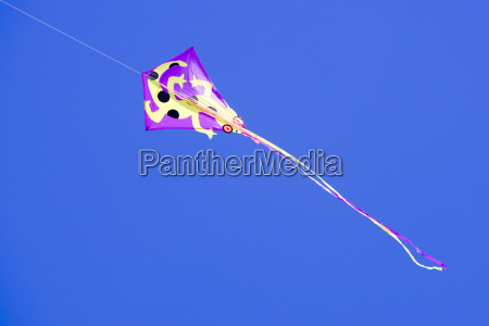 low angle view of a kite