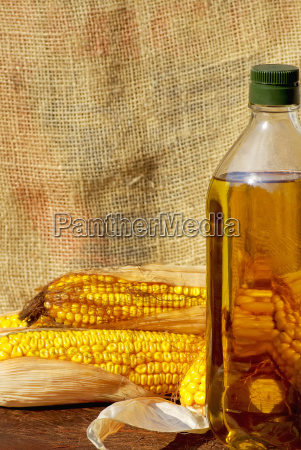 yellow corn and oil