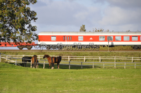 the train to sylt