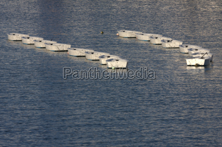 two columns of small white boats