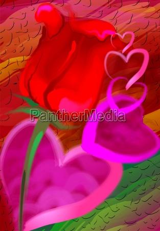 blume pflanze rose party feier fest