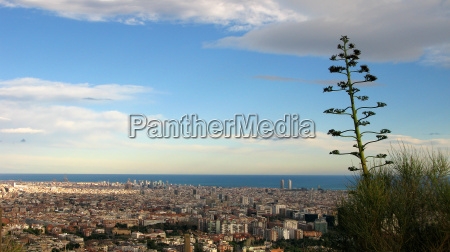 barcelona view from the hills