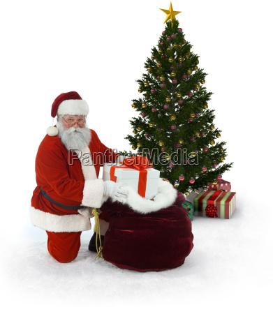 weihnachtsbaum, und, weihnachtsbaum - 3924049
