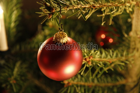 geschmueckter weihnachtsbaum