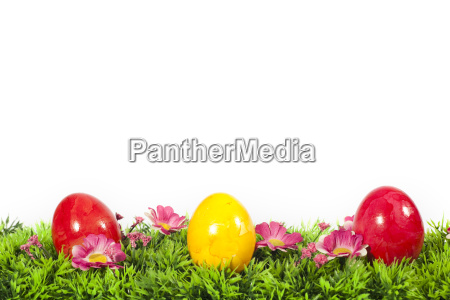easter eggs in the easter grass