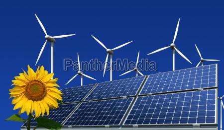 monokristalline solarmodule windkraftraeder und sonnenblume