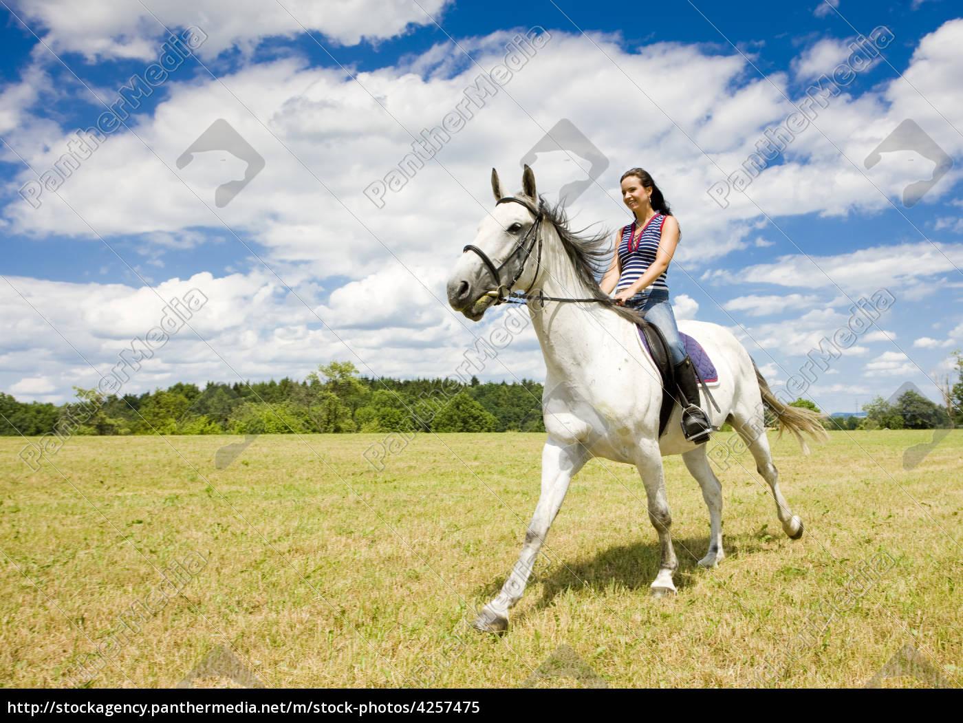 reitsport, auf, dem, pferderücken - 4257475