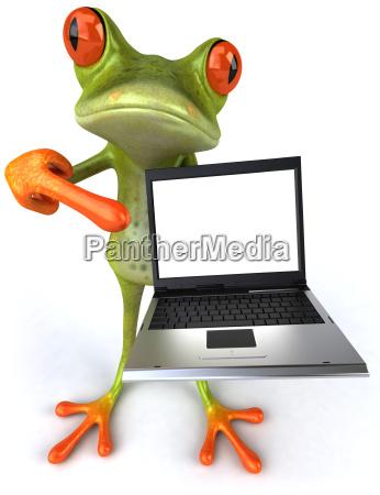 fun frosch