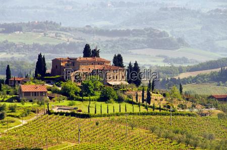 toskana weingut tuscany vineyard 03