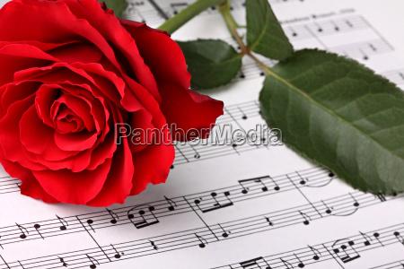 symphony of love 3