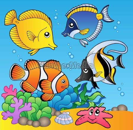 underwater animals and fishes 2