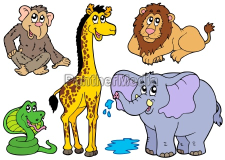 various african animals