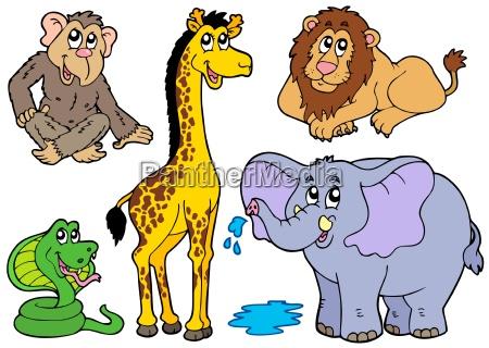 verschiedene afrikanische tiere