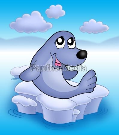 cute seal on iceberg 2