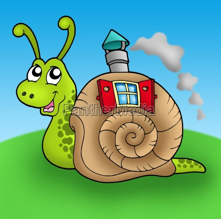 snail with shell house on meadow