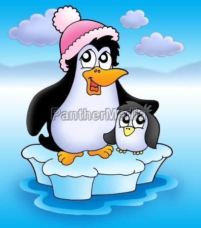two penguins on iceberg