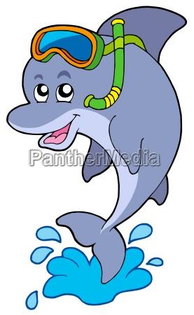 dolphin snorkel diver