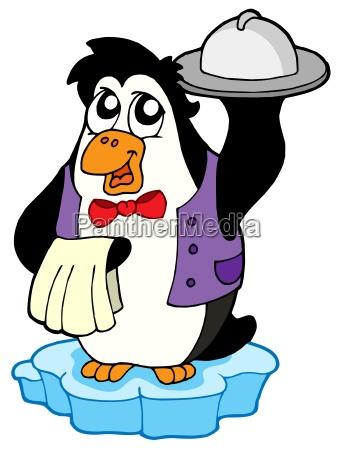 pinguin kellner auf eisbeg