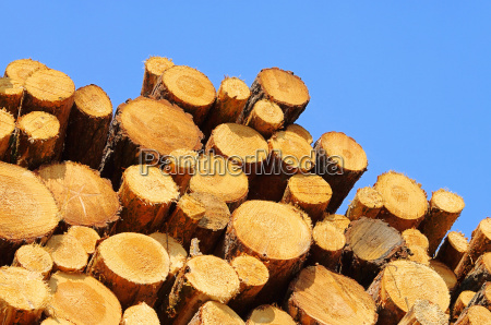 holzstapel stack of wood 35