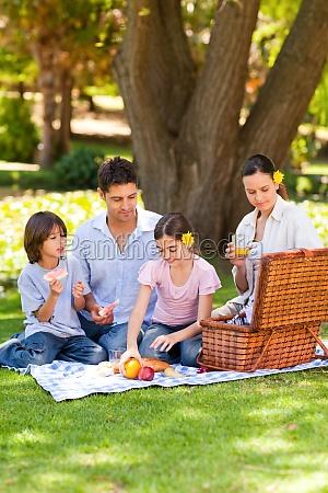 reizende familie die im park picknickt