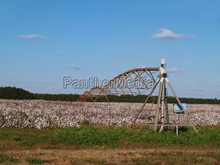 landwirtschaft ackerbau feld usa farm georgien
