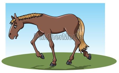 muede pferd
