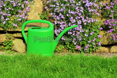 watering can in the garden