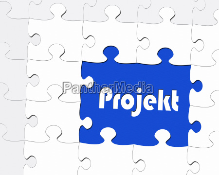 project business concept