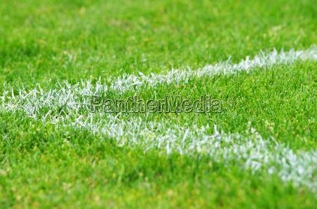 fussball rasen ecke soccer grass