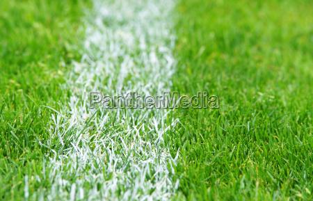 soccer grass fussball rasen
