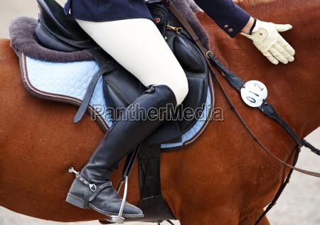 reitsport detail horse woman
