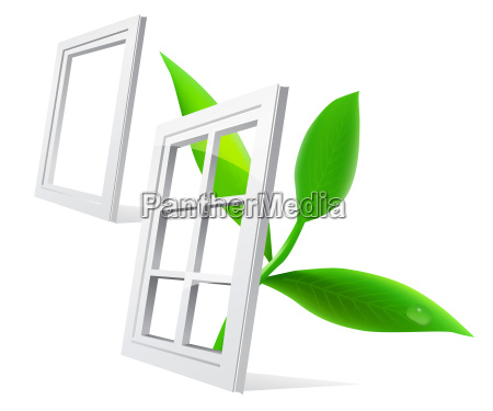blatt baumblatt fenster luke glasfenster fensterscheibe