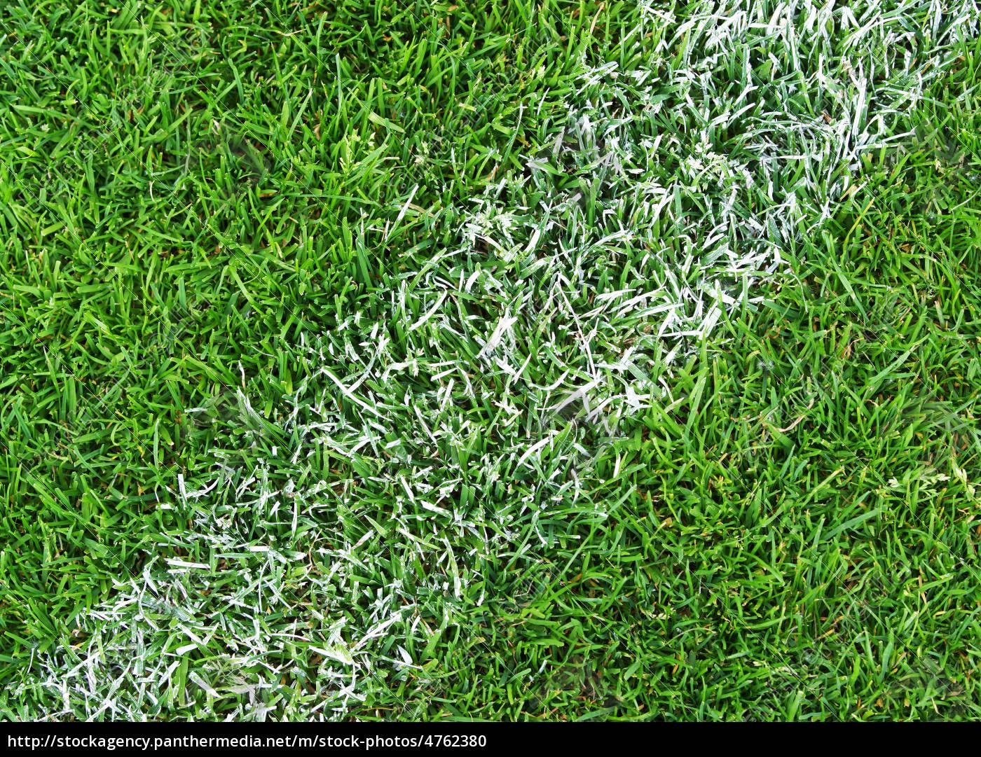 fu ball rasen nahaufnahme soccer grass close up lizenzfreies foto 4762380 bildagentur. Black Bedroom Furniture Sets. Home Design Ideas